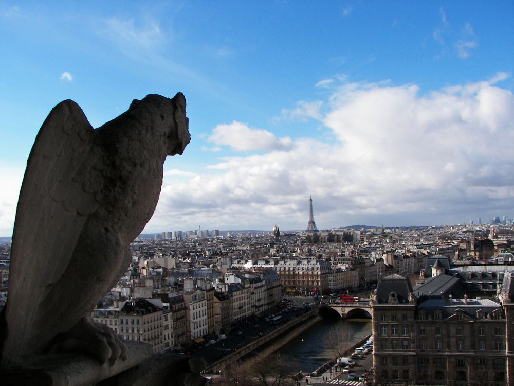 Paris gargoyle view copy