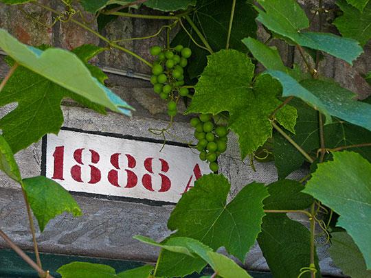 david-venice-street-number